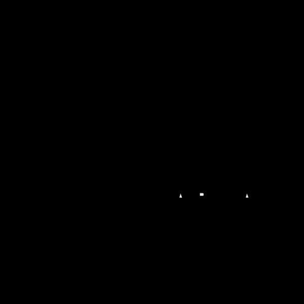 Zima Logo